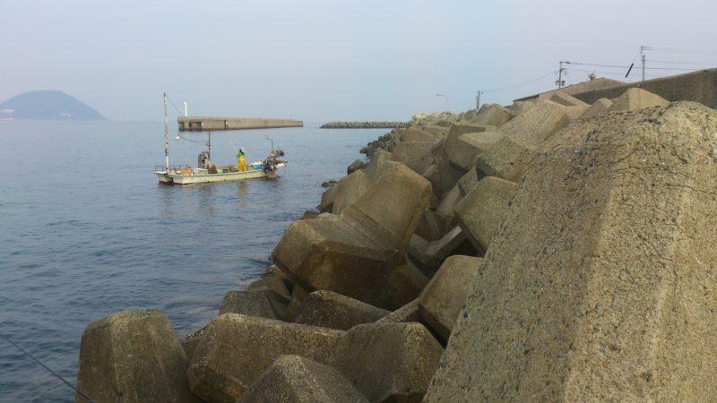 ワカメ採りの漁船