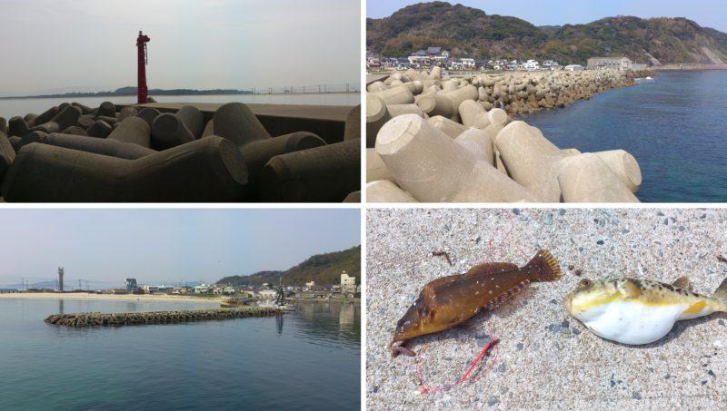 釣れた魚と東波止赤灯台