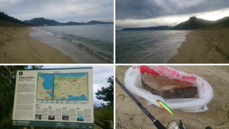 本日の釣果と今津海岸