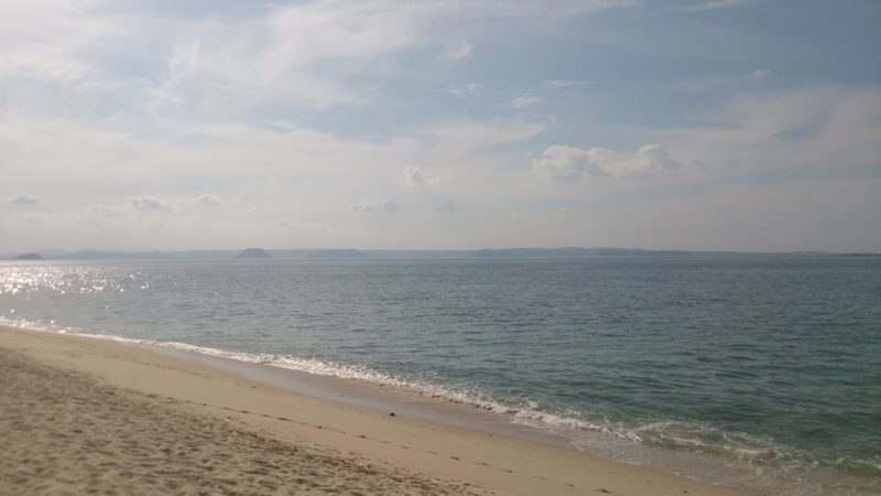 野辺崎から見た大海原