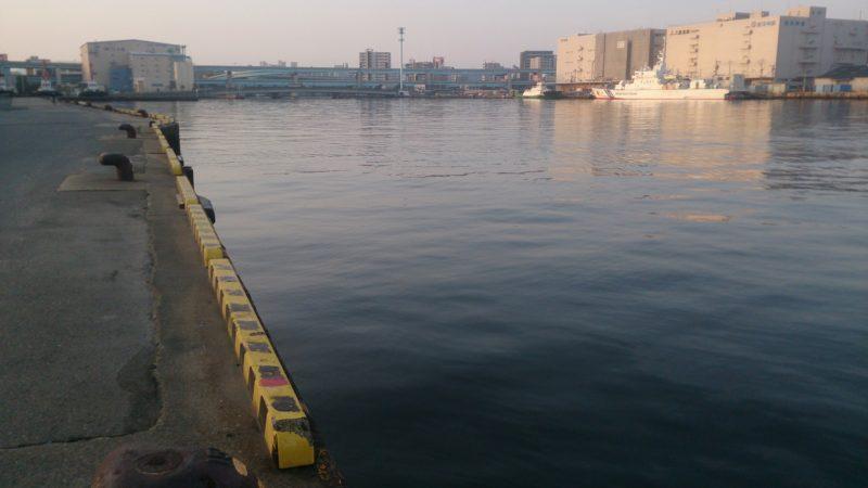 川寄りの岸壁