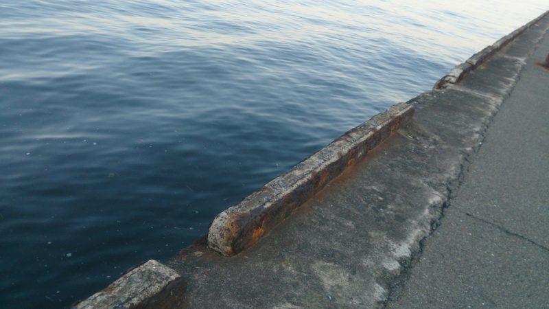 須崎埠頭の岸壁