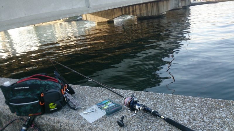 河口での釣り