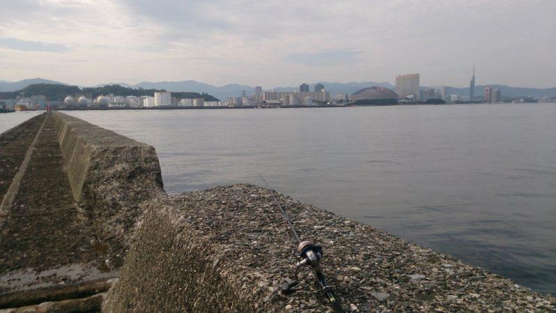 博多沖防(公園下付近のポイント)