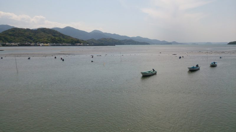 漁師による潮干狩り