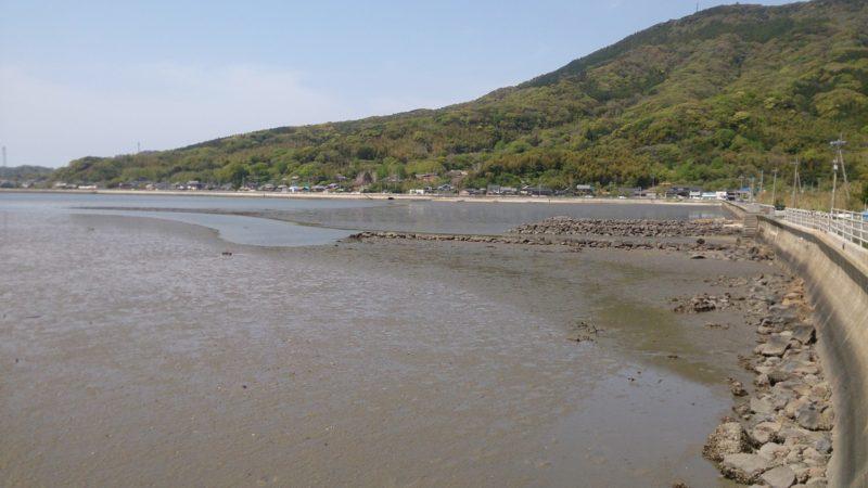 加布里湾の干潟